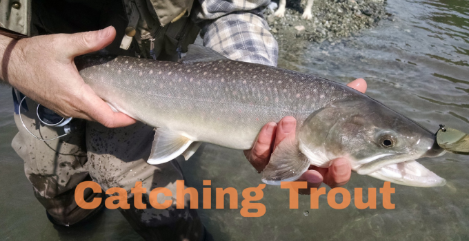 Fishing Tips For Trout